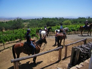 Group of guests on horseback departing the hitching rail next to the winery.
