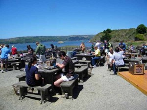 Eating oysters at the Hog Island Oyster Farm on Tomales Bay north of San Francisco.
